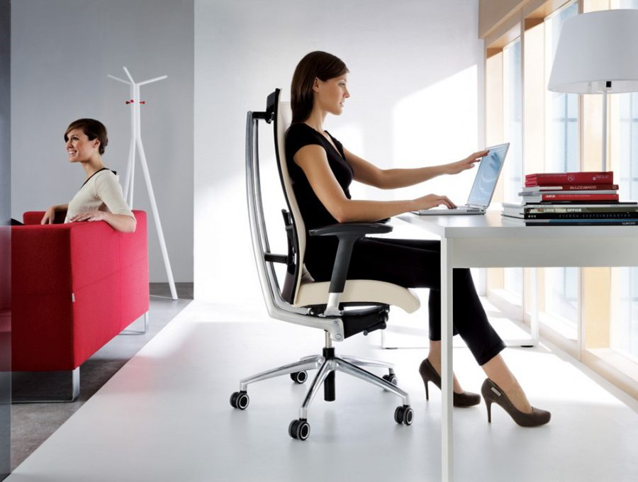 2. Ergonomic Chairs